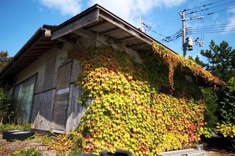 新潟0532