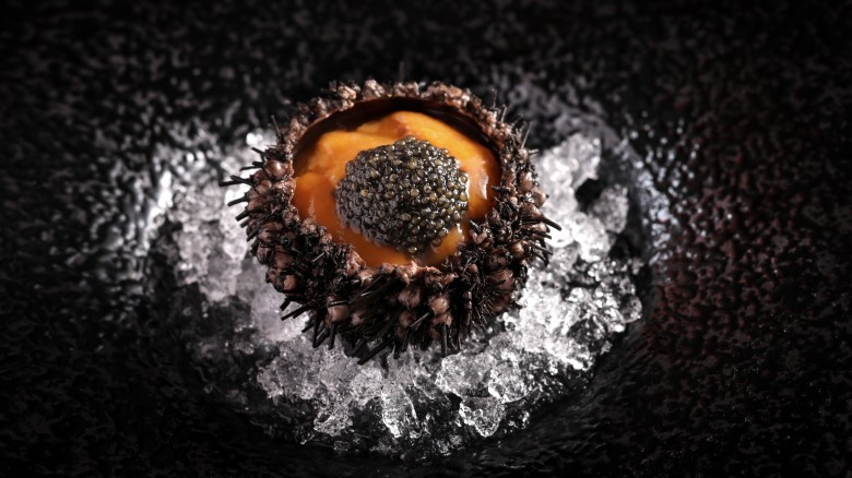 JWMPQ_Pink Pearl Phu Quoc Sea Urchin 2
