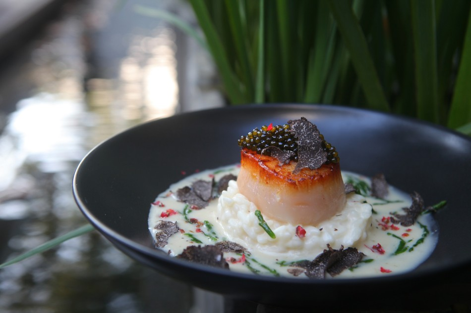 魚子醬干貝燉飯-1
