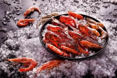 台北國泰萬怡酒店 三月推出海鮮控不容錯過的全新主題菜單「蝦饗宴」